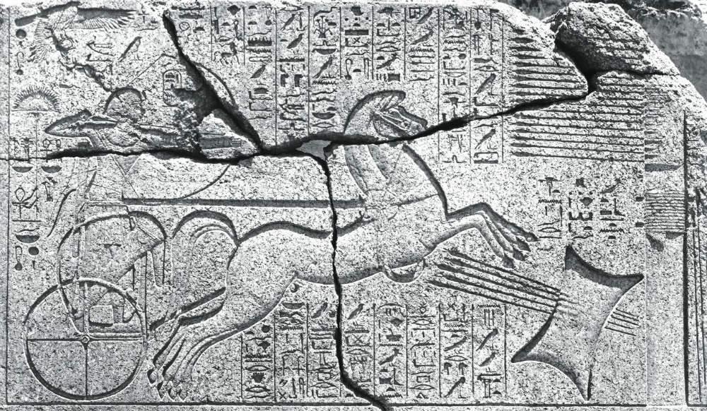 egitto-la-straordinaria-scoperta-del-faraone-amenofi-ii/