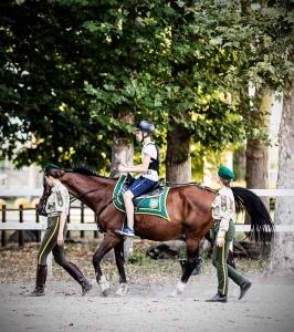 equitazione_milano_cavalli